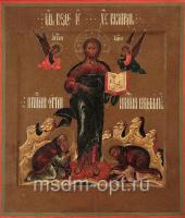 Господь Вседержитель икона (арт.01023)