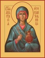 Анастасия Узорешительница великомученица, икона (арт.00992)