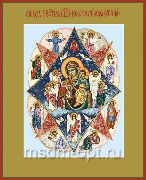 Неопалимая Купина икона Божией Матери (арт.264)