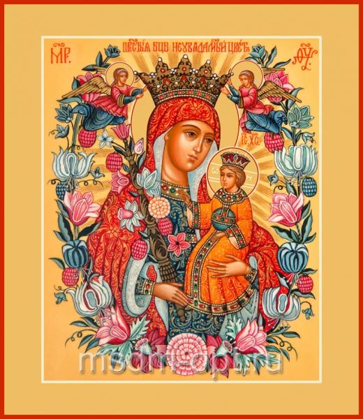 Неувядаемый Цвет икона Божией Матери (арт.313)