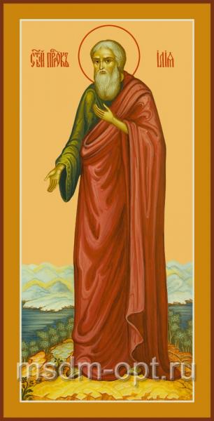 Илия пророк, икона (арт.04441 с-2)