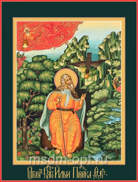 Кормление святого пророка Илии вороном, икона (арт.04444)