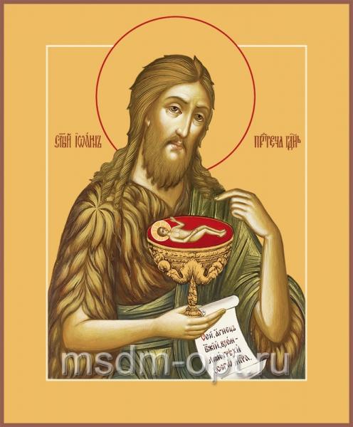 Иоанн Предтеча Креститель Господень, икона (арт.455)