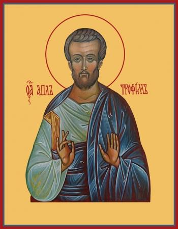Трофим апостол от семидесяти, икона (арт.6442)