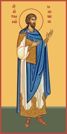 Тимофей Палестинский мученик, икона (арт.6522)