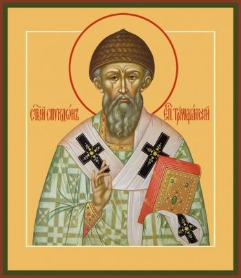 Спиридон Тримифунтский святитель, икона (арт.6727)
