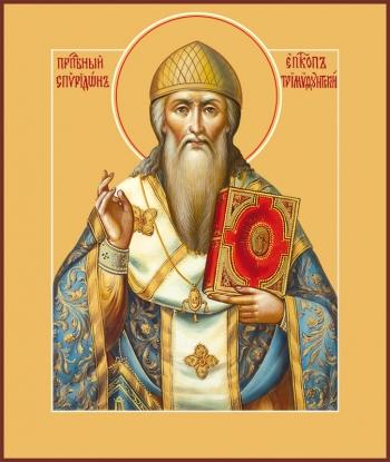 Спиридон Тримифунтский святитель, икона (арт.741)
