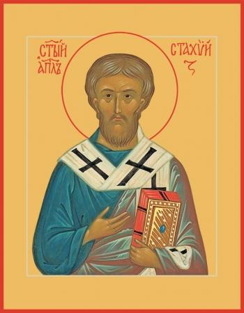 Стахий епископ Византийский, апостол, икона (арт.787)