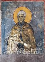 Павел Ксиропотамский преподобный, икона (арт.AC23)