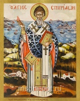 Спиридон Тримифунтский святитель, икона (арт.04704)