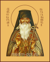 Преподобноисповедник Севастиан Карагандинский (Фомин), икона (арт.04713)