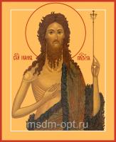 Иоанн Предтеча Креститель Господень, икона (арт.04850)