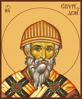 Спиридон Тримифунтский святитель, икона (арт.00740)